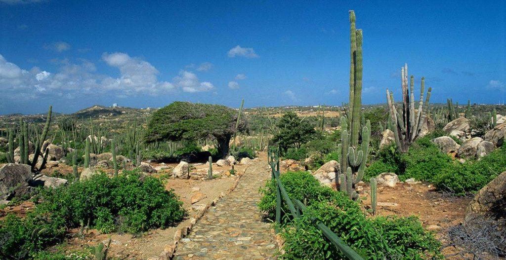 DESTINOS  | ARUBA, LA ISLA DE LA FELICIDAD