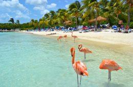 aruba la isla del encanto