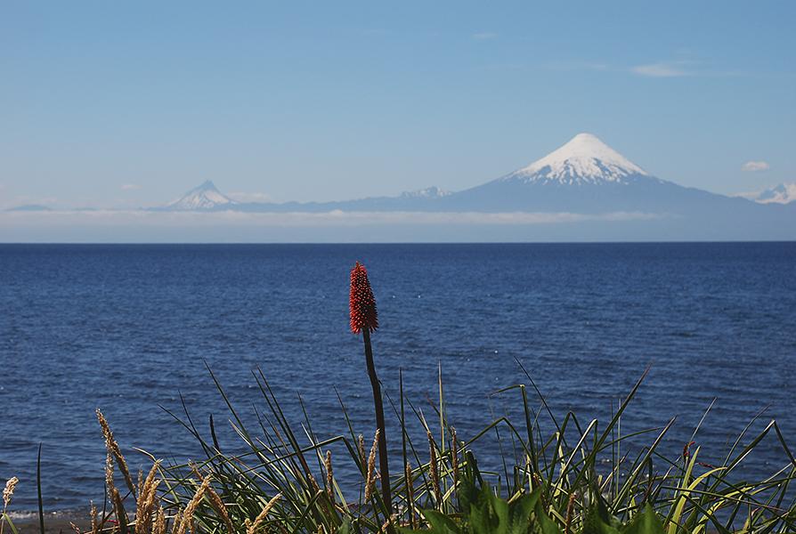 DESTINOS LIFESTYLE  | Sur de Chile