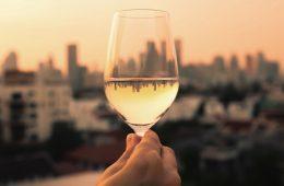 vinos organicos