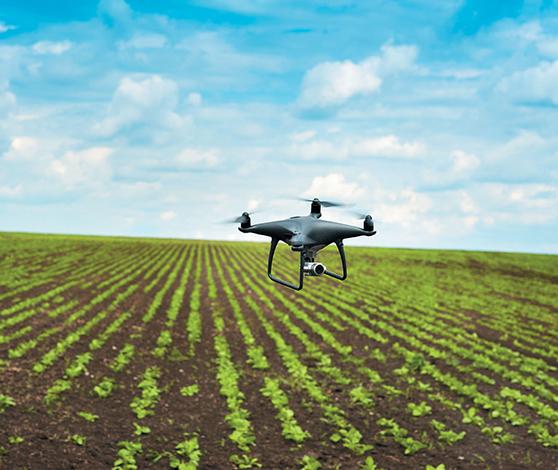 ESPECIALES  | AGROTECNOLOGÍA: EL CAMPO PANAMEÑO SE DIGITALIZA